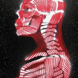 skeletal_stencil